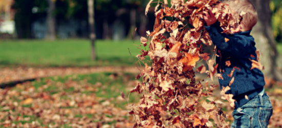 Boy playing in piles of leaves