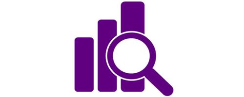 Norfolk Insight Logo