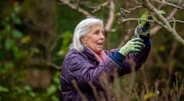 older lady gardening
